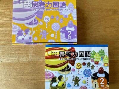 七田式小学生プリント 2年生思考力国語